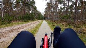 Mooie fietspaden dwars door de bossen