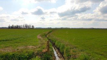 volgens Strava was dit een verhard pad!